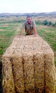 La Reina Isabel II de Inglaterra recibe una muestra de la mejor alfalfa del mundo: la de Castelserás (Teruel) 1